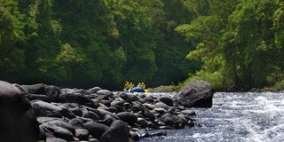 Established in 1985, the Rio Pacuare Forest Reserve is located in the Cartago Province.