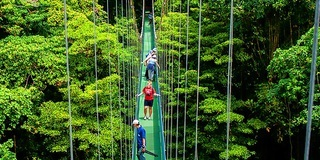 Monteverde is a great place for birdwatchers and those that want to explore the cloud forest canopy.