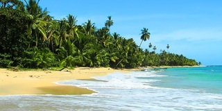 The Caribbean coast of Costa Rica is a beautiful region that is generally less developed and touristy than the Pacific side.