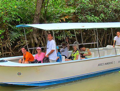Damas Island Riverboat Safari