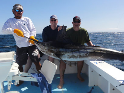 Offshore Sport Fishing 44 Ft. Boat - Half Day