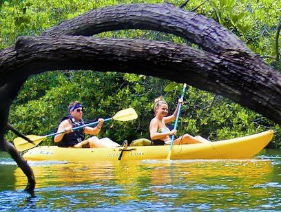 Tamarindo Mangrove on Kayaks