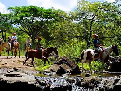 Waterfall Tour on Horseback