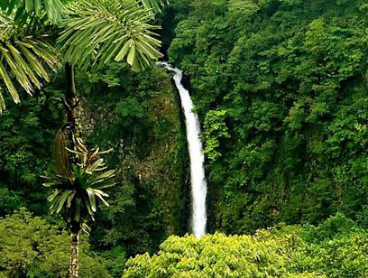 La Fortuna Waterfall by Car