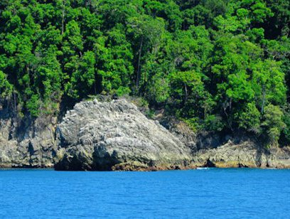 Cano Island Biological Reserve Tour