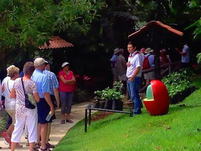 Espiritu Santo Coffee Tour