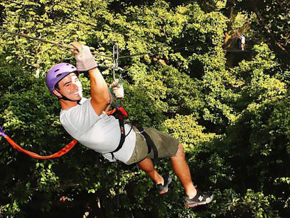 Canopy Zipline with Horseback Riding - Monkey Jungle
