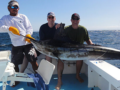 Sportfishing 38 Foot Topaz-Talking Fish - Full Day