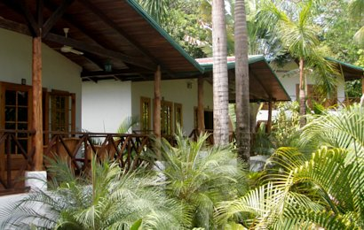 Quality, budget-friendly hotels are hard to come by in Manuel Antonio, but The Falls Resort is just that.