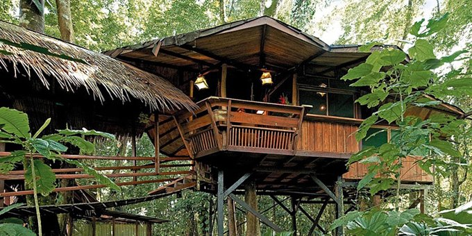 Tree House Lodge is a unique hotel property located at Punta Uva. Amenities include privacy, direct beach access, relaxation, rich gardens.
