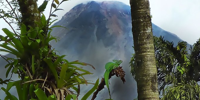 Arenal Volcano and Ecotermales Hot Springs