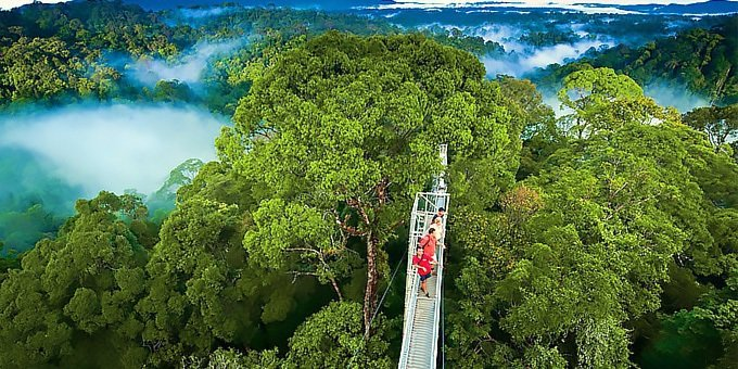 Canopy Combo Tour Monteverde Costa Rica
