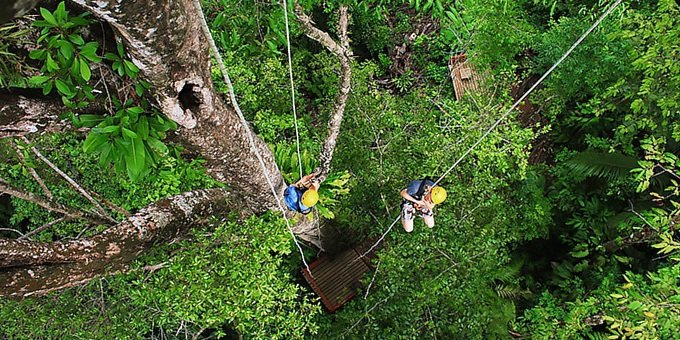 Today you will go on a Tree Climbing tour in Hacienda Baru National Wildlife Refuge.  A professional guide will accompany you on a thrilling tree climb into the canopy of the rainforest. No experience necessary, though participants should be in fairly good physical condition.  After a safety briefing, your guide will assist you the entire way up some 35 meters.  This 2.5 hour tour includes guide.  No transportation is needed from Hacienda Baru.  Transportation is not included from other area hotels.