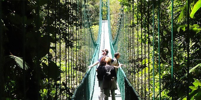 Selvatura Canopy and Guided Hanging Bridges Combo