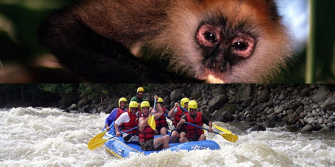 Choice of Rafting OR Riverboat Safari