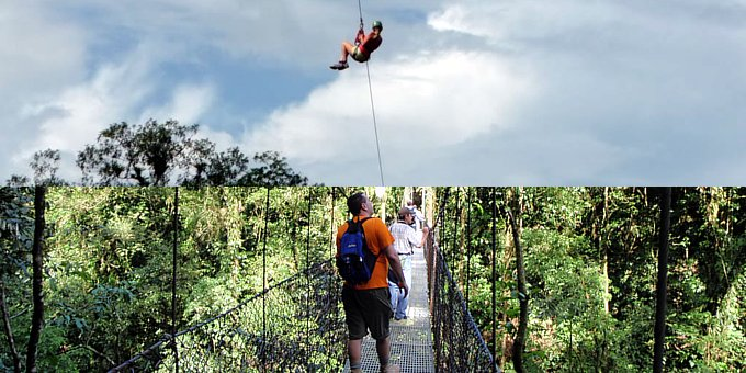 Canopy Zipline or Hanging Bridges
