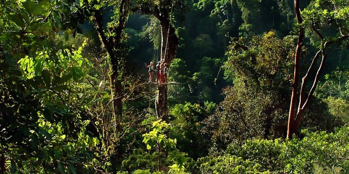 Pacuare Adventure Canopy Tour