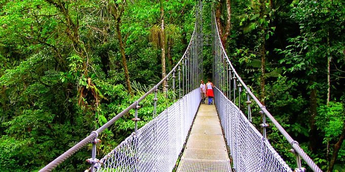 Combination Tour Baldi with Hanging Bridges
