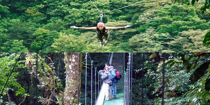 Choice Canopy Zipline OR Hanging Bridges