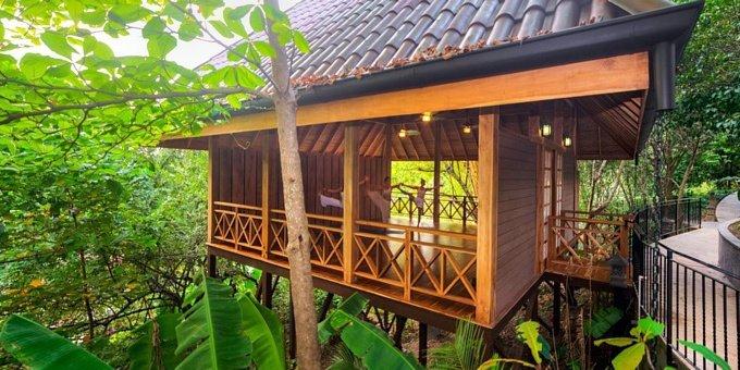 Yoga Room Hotel Tree House