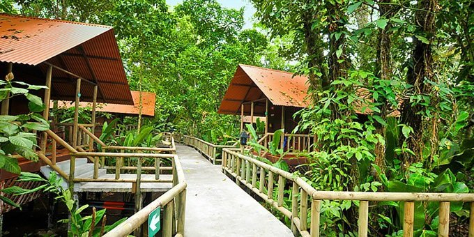 Looking for an intense Nature encounter? These rustic bungalows built on stilts with connecting above ground pathways at Aninga Lodge are sure to deliver. Set in the wilds of Tortuguero, a remote region only accessible by boat or plane, the Lodge and its included tours will ensure you encounter an abundance of jungle wildlife. Hotel amenities include a full day restaurant, well-equipped bar, inviting swimming pool, refreshing Spa (price not included in tour), as well as Wifi around the premises. 2-night minimum stay. National Park entrance fee not included.