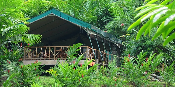 Rafiki Safari Lodge is a luxurious wilderness tent camping experience, located within 842 acres of pristine primary and secondary rainforest  along the Savegre River, 30 kilometers south of Manuel Antonio.  Rafiki Safari Lodge focuses on conservation,  adventure, and sustainable tourism, thus creating a positive and renewed vibe  to your Costa Rican vacation.  Rafiki  Safari Lodge amenities include restaurant, bar, pool and water slide.