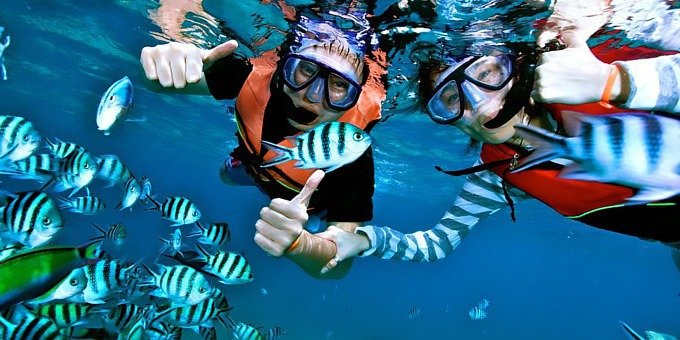 During the months of January through August, Cano Island offers some of the best snorkeling in Costa Rica.