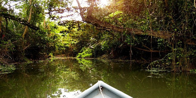 Great fishing, bird watching and plenty of warmth are what you'll find in the Barra del Colorado Refuge. An abundance of wildlife awaits you in one of Costa Rica's warmer year-round climates.