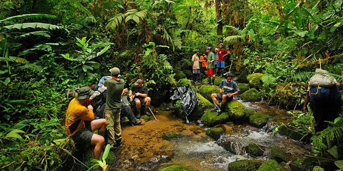 La Amistad International Park is for the adventurer in you. With challenging hiking trails, camp grounds and Costa Rica's most diverse wildlife, this park is sure to create memories.
