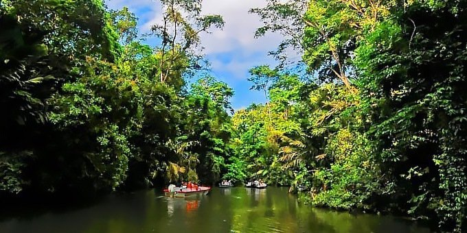 Only accessible by boat, the tiny fishing village of Tortuguero protects several species of sea turtles during nesting season. By riverboat, explore a fusion of ecosystems traveling through dense canals paralleling the coast.