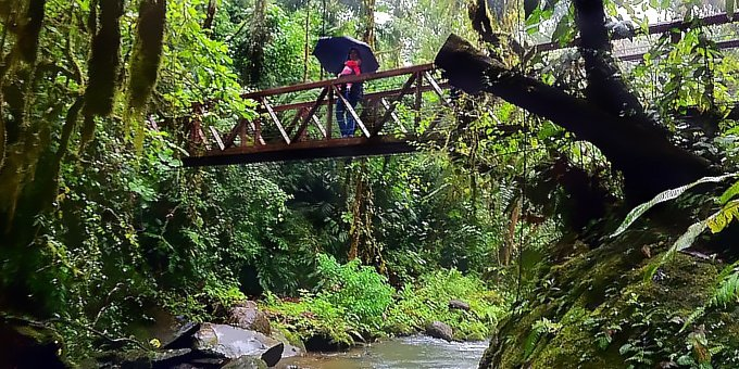 Surrounded by rainforest and cloud forest, the weather in the Heredia-Poas area is fairly predictable.