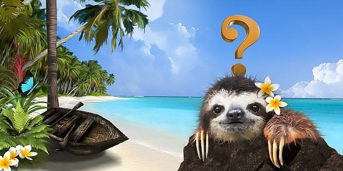 Our frequently asked questions section outlines the most common questions we are asked about traveling to Costa Rica.