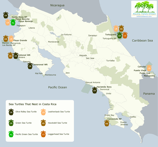 This map shows where to find nesting sea turtles in Costa Rica.