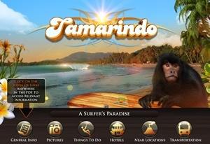 Tamarindo Guide