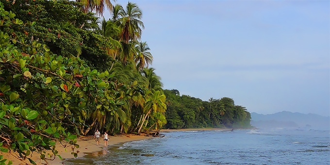 The beaches of Costa Rica are mostly protected
